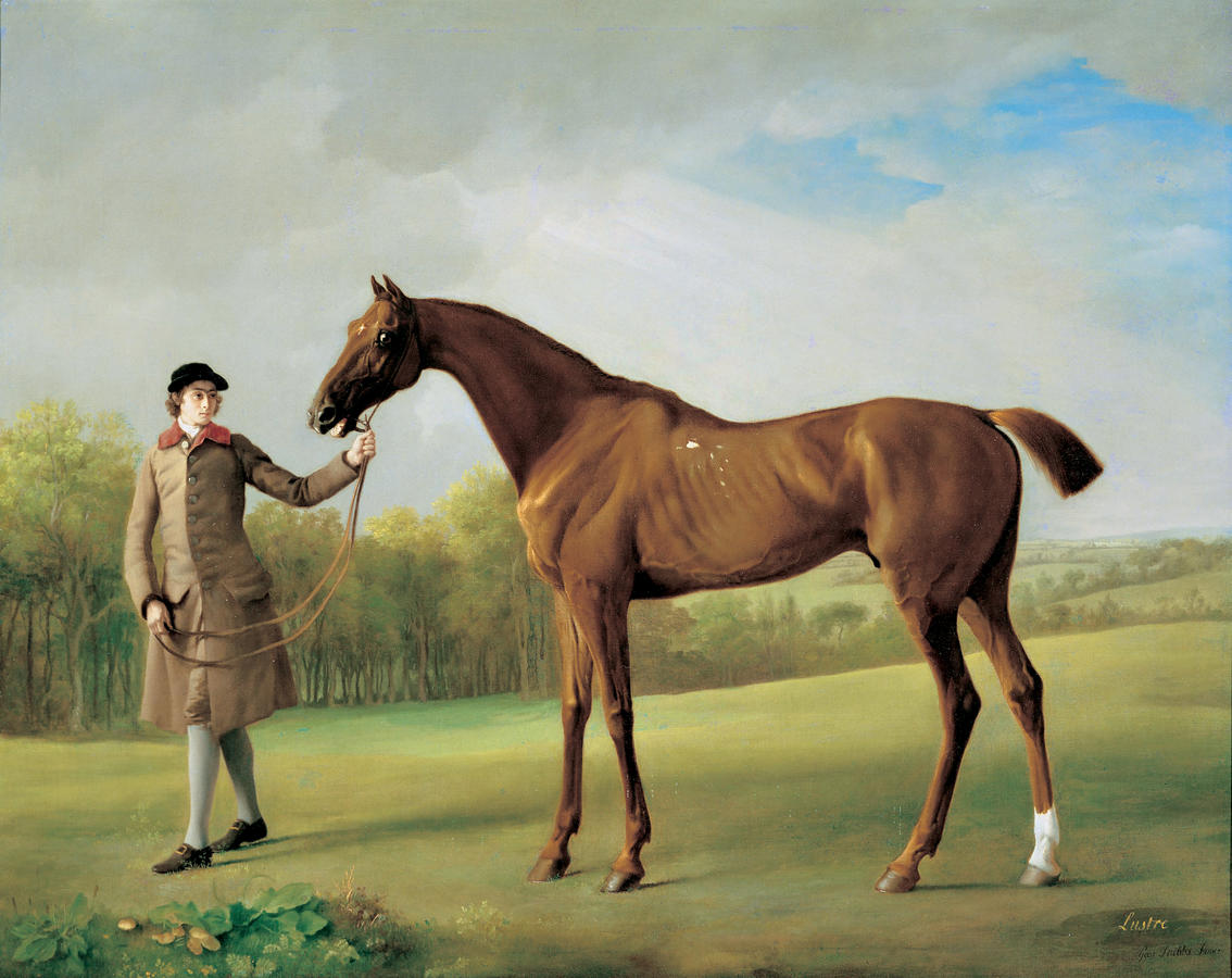 George Stubbs (1724–1806), Lustre, with a Groom, c. 1760–62, oil on canvas, Yale Center for British Art, New Haven; Paul Mellon Collection, Photograph: Richard Caspole