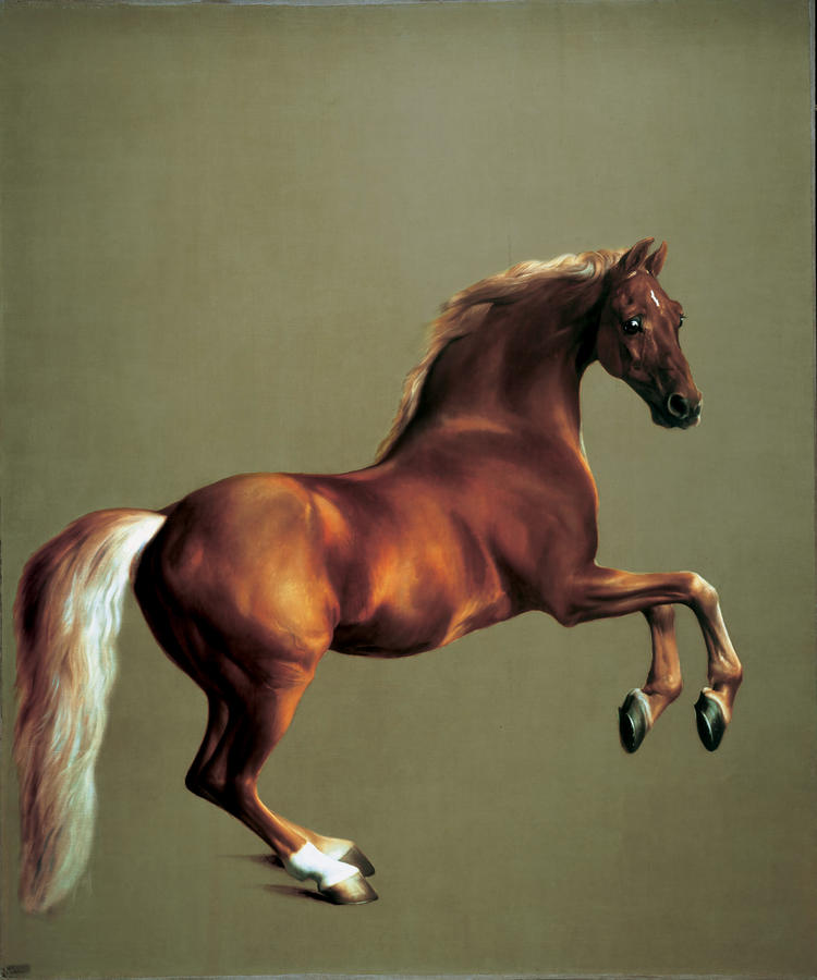 George Stubbs (1724–1806), Whistlejacket, c. 1762, oil on canvas, The National Gallery, London