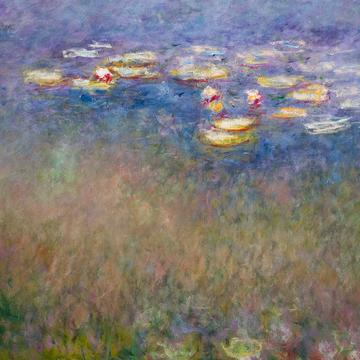 "Monet, ""Water Lilies (Agapanthus)"""